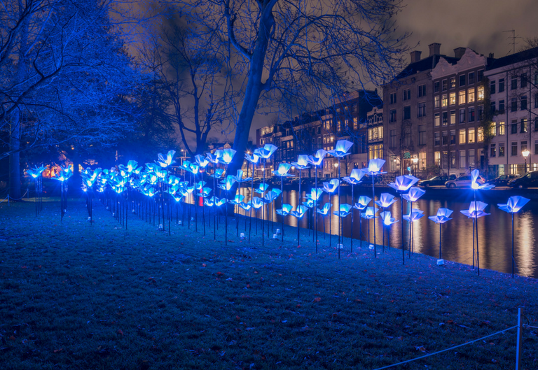 Amsterdam Festival Svjetlosti